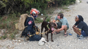 Stout the dog and rescuers