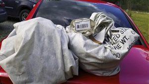 cash-stuffed sacks on car hood