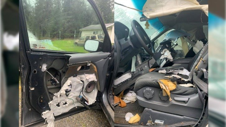 photos showing extensive damage to interior of pizza delivery car